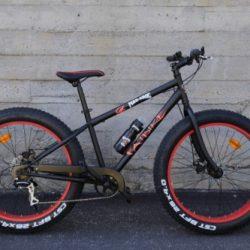 Fat biket